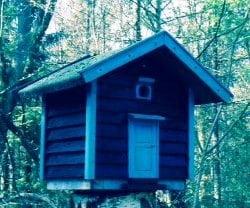 Blåbærhyttens gæstefuglehus var mit forsøg på selv at bygge et hus. Og det har vist sig at være beboeligt, så næste gang bygger jeg nok et til mennesker....