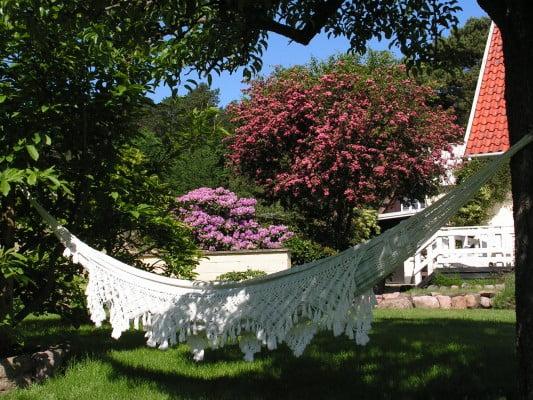 Hængekøjen hang perfekt i delvis skygge mellem pæretræet og et stort magnoliatræ. Et meget populært sted at opholde sig efter søndagsfrokosten.