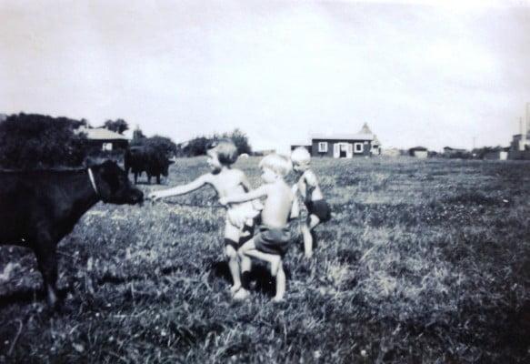 """Mine forældre købte i 1949 et stykke bark mark i 2. række fra stranden. Her blev """"Firkløverhuset Mak"""" samlet og sat op og bondens søn og køer blev vores legekammerater."""